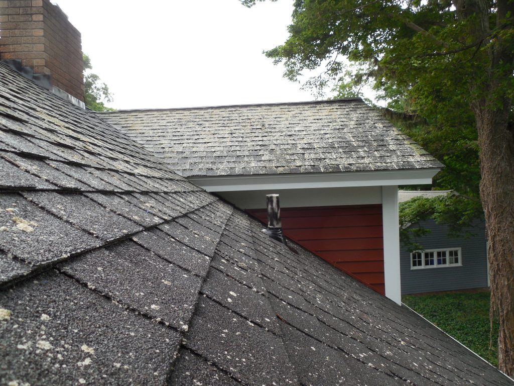 roof cleaning MI