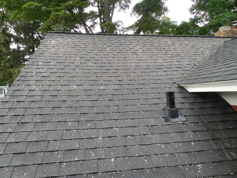 Roof Cleaning Company Grand Rapids MI